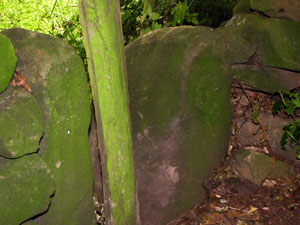 photo of boundary marker in Culland Wood