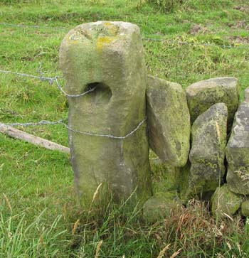 photo of boundary marker at Hilltop Farm