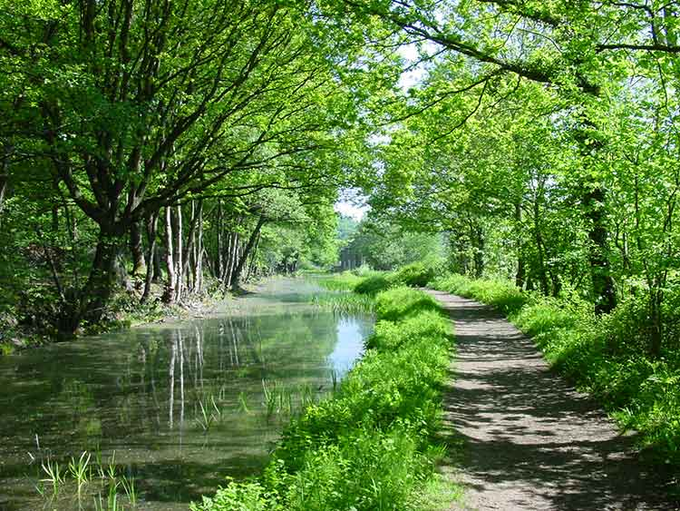 Cromford Canal towpath