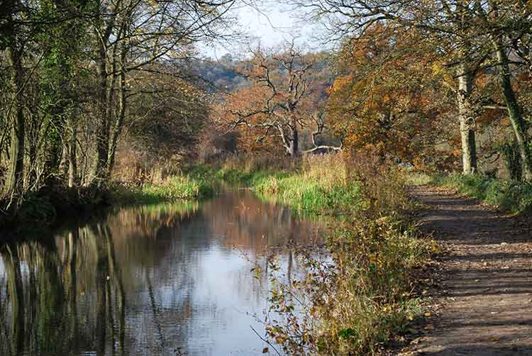 Cromford Canal at Autumn